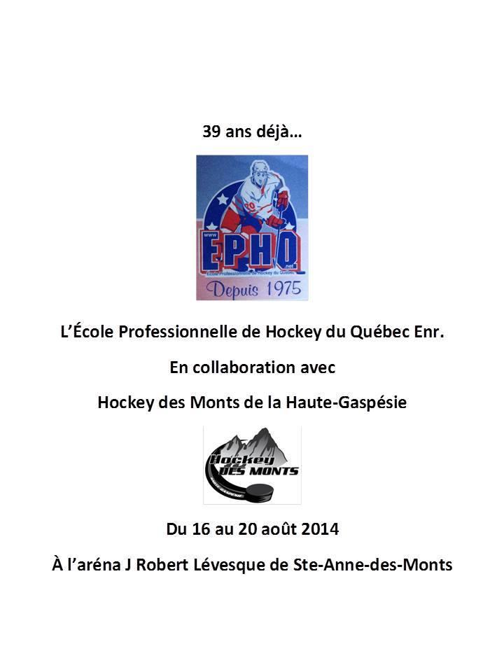 École de hockey l'été ( info Nancy au loisirs)
